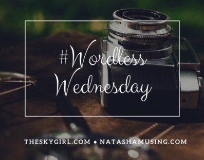 wordless-wednesday-natasha-musing-logo