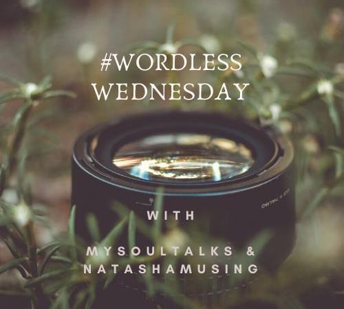 wordless-wednesday-natasha-musing-logo