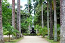 Botanical Garden of Rio