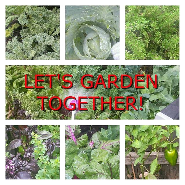 Let's Garden Together