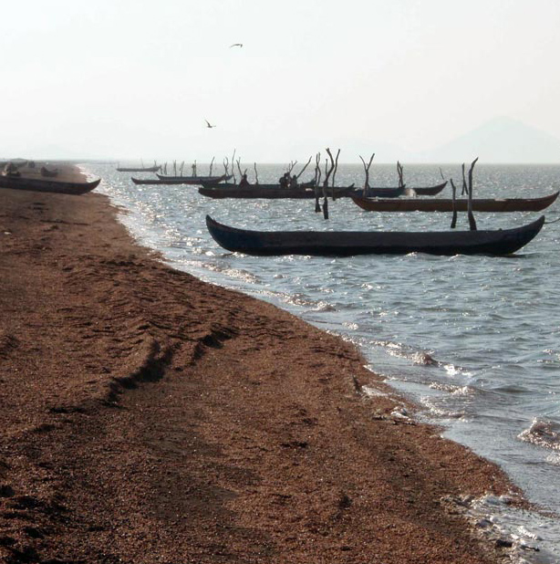 Canoes are moored at Playa de San Mateo del Mar on the Isthmus of Tehuantepec in Oaxaca, Mexico.(Courtesy L. Brehmer and E. Flores-Guevara)
