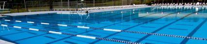 NSU Pool