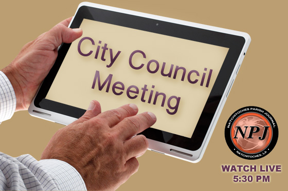 city-council-meeting