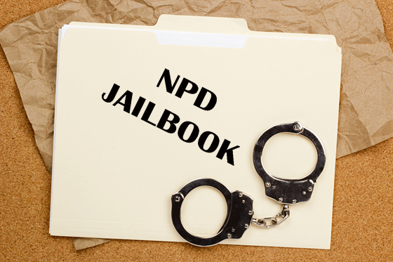 npj-npd_jailbook-2017