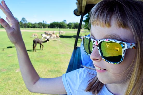 Global Wildlife_Jessica
