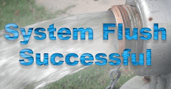 System FLush