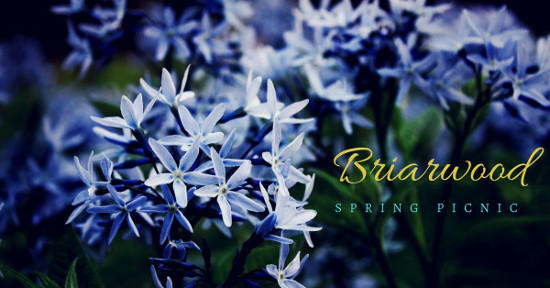 Briarwood Spring Picnic.jpg