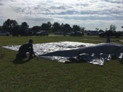 Tornado Aftermath_0685