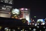 LED 장미   Dongdaemun Design Plaza (DDP)