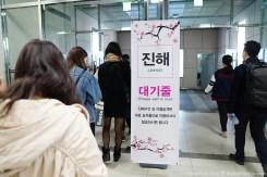Jinhae-Cherry-Blossom-2018-03