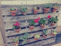 Pallet Garden Nate