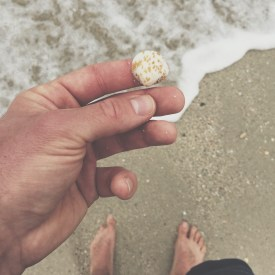 Searching for seashells along the beach.