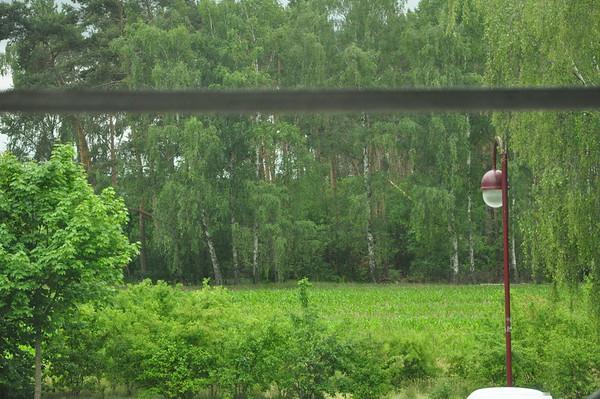Blick aus dem Kinderzimmerfenster.