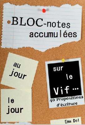 Les Carnets 2017 première partie - Ema Del bloc notes