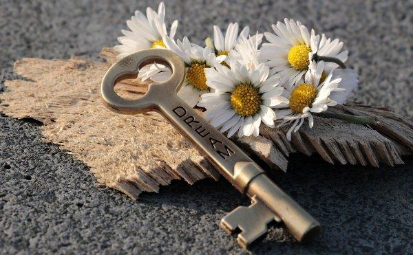 """image montrant des marguerites et une clé sur laquelle il est écrit """"dream"""""""