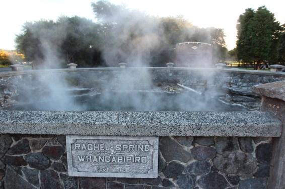 Les sources (soufflées ) de Rotorua