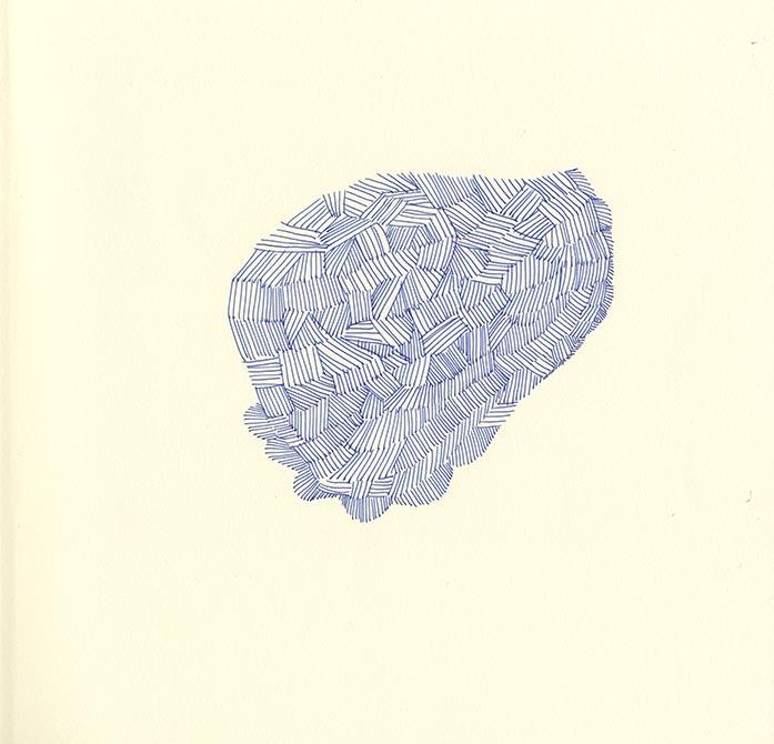 TORTUE-2-by-Nathalie-Desforges