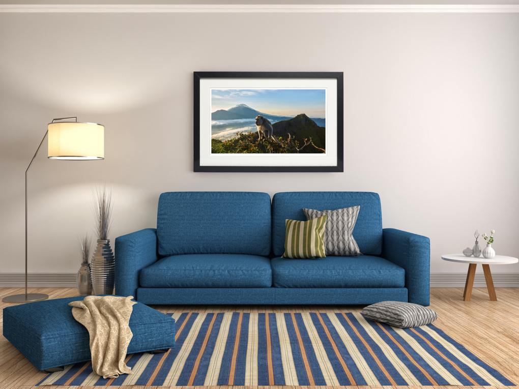 Fine art print monkey on a mountain bali in living room for Living on a mountain