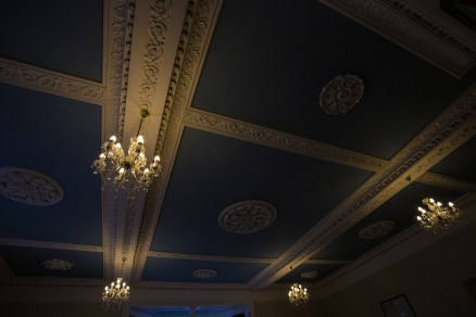Moulded ceilings