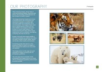 Paws for Earth Guidelines OUTLINES 16