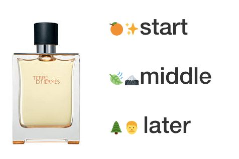 Terre D'Hermès — Hermès — Fragrance Description For Teens