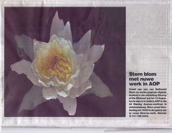 Nathaniel stern, Giverny of the Midwest, Beeld feature