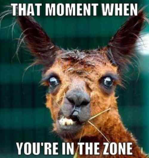 26967-that-moment-when-youre-in-the-zone