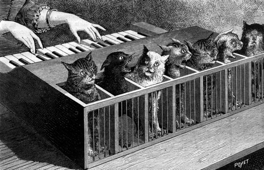 Poyet cat piano