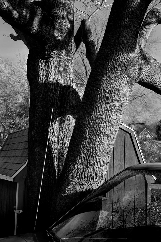 Uncentered #22, Digital Photograph