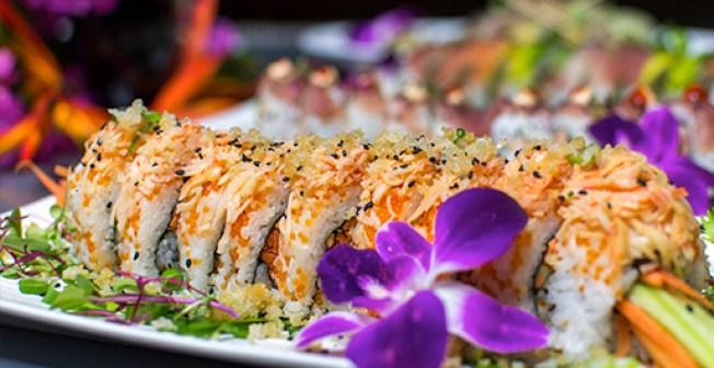 Pool Bar Sushi, Rincón, Puerto Rico, Restaurantes, Turismo, Sushi, Fresh Fish