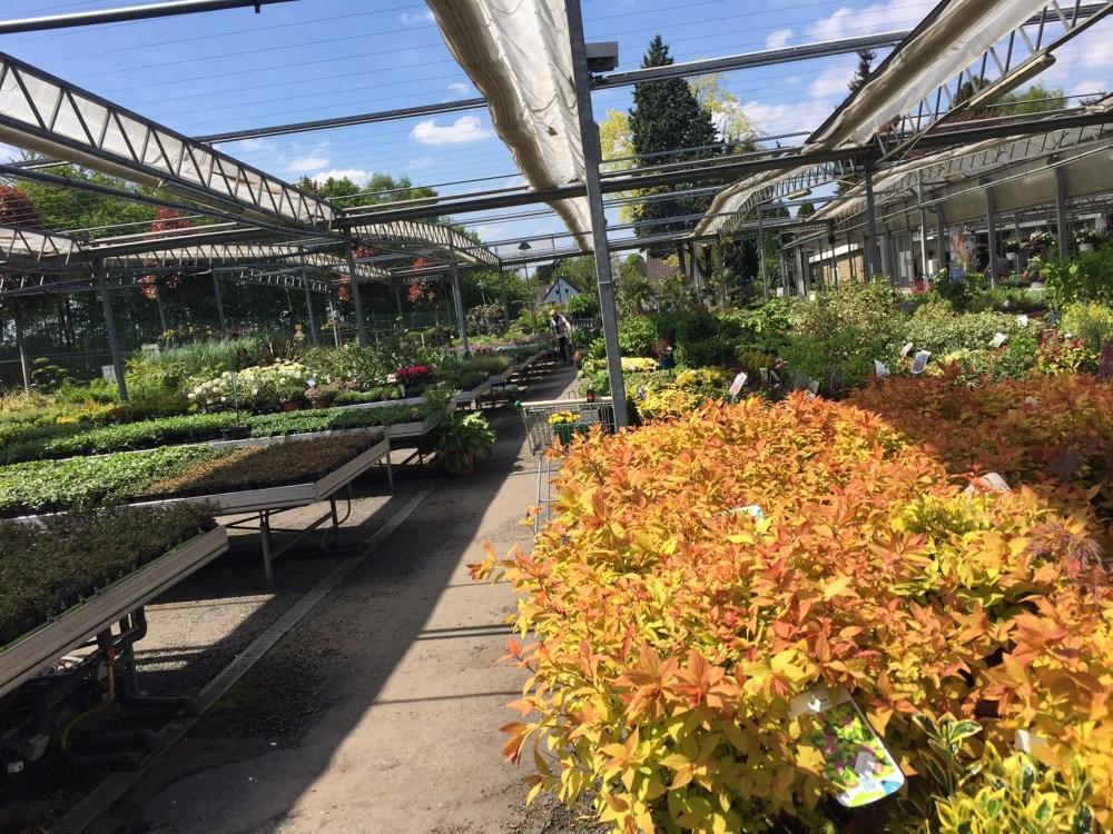 turkenburg le paradis du jardinier