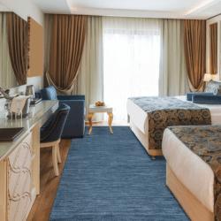 Lazio hotel area rug