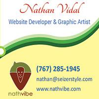 Nathan Vidal Business Card half