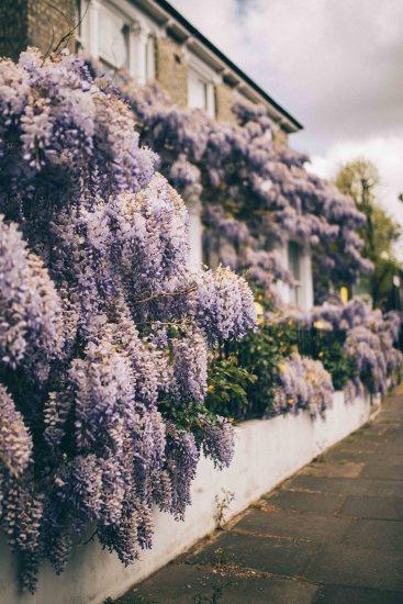flower house london lidex ruffle dress natinstablog-22