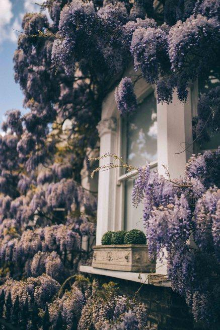 flower house london lidex ruffle dress natinstablog-25