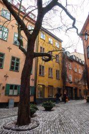 lindex stockholm-25