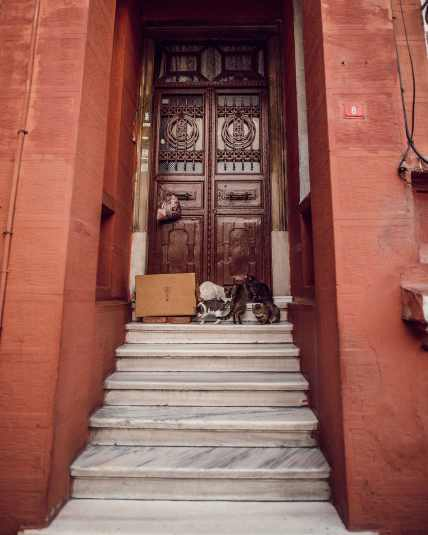 istanbul 2018 natinstablog-11