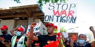 Pro-Tigray protesters