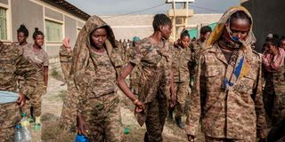Tigray fighters