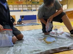 Student casting footprint