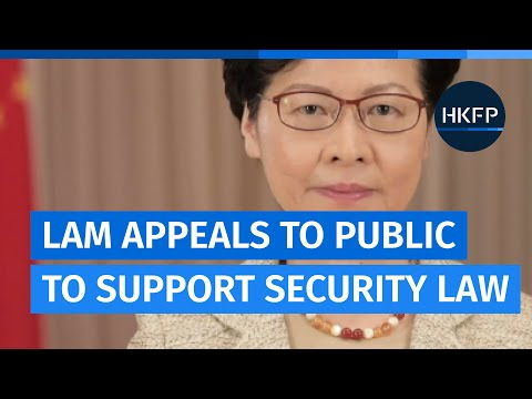 Leader Carrie Lam appeals for Hong Kong to support national security law amid 'terrorist threat'