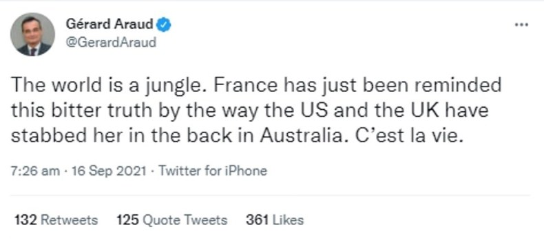 'The world is a jungle,' ex-ambassador to the US Gerard Araud tweeted on Thursday morning
