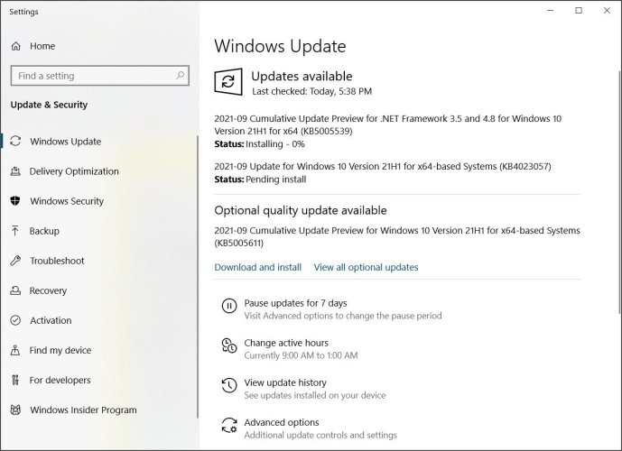 Windows Update offering the optional KB5005611 update