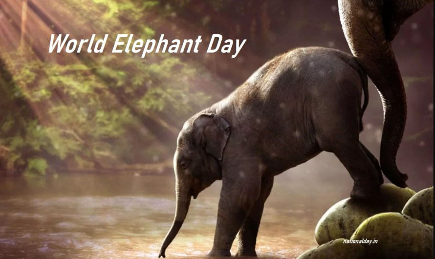 All About World Elephant Day 2021, Theme, Posters, History