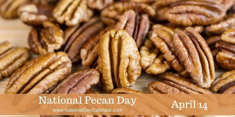 National Pecan Day - April 14