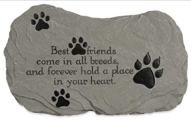 National Pet Memorial Day Image