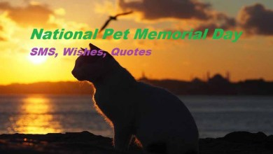 Pet Memorial Day Wishes