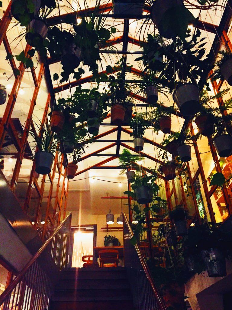 Inside the greenhouse at Vakst Copenhagen National Dish Review