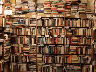 the best books on economics to read