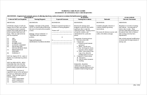 Care Plan Template Template Business